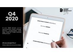 Dziennik Behawioralny Kołcza Majka - Q4 2020 - w wersji PDF